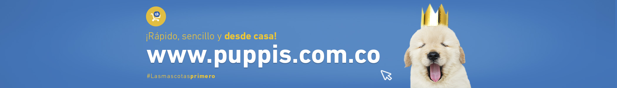 AO Portal Web