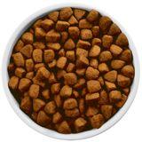 Alimento-para-perro-Hills-Metabolic