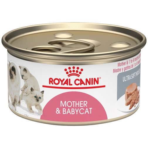 Mother--Baby-Cat-Ultra-soft-mousse