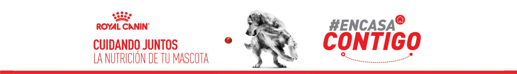 Royal Canin Promo