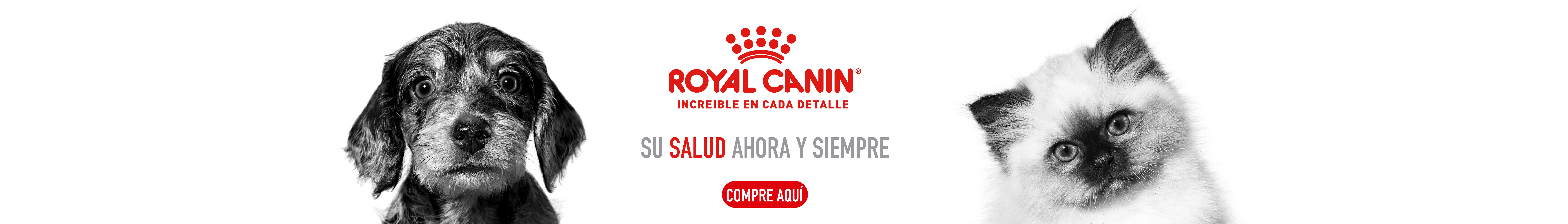 Royal Canin Marca