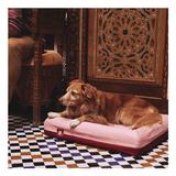 Cama-Para-Perro-Zee.Dog--Najima-