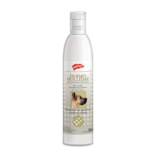 dermoholliday-shampoo-hollyday