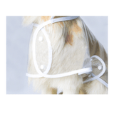 impermeable-transparente-para-perro