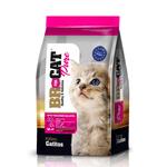 alimento-para-gato-br-cat-gatitos