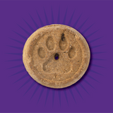Evolve_Dog_GrainFree_PeanutButter_Biscuits_Layout-05