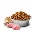 151_ciotola-nd-low-ancestral-grain-carne